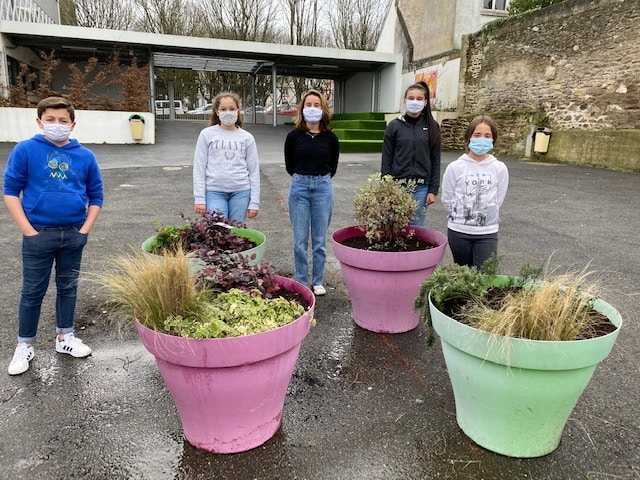 Des éco délégués jardinent pour embellir la cour du collège !