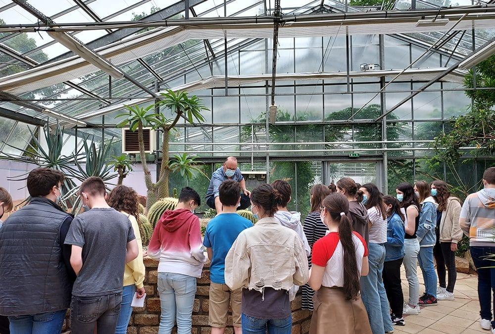 Visite du conservatoire botanique de Brest !
