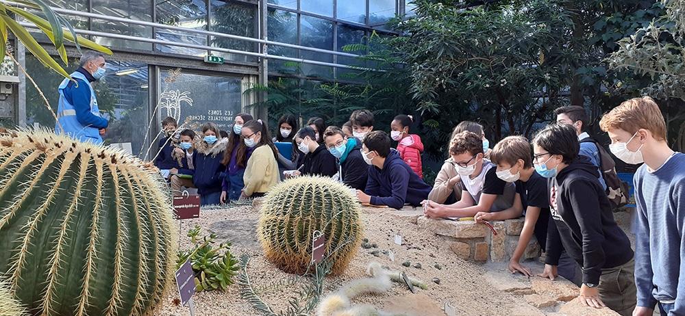 Visite du Conservatoire Botanique pour les 4èmes !